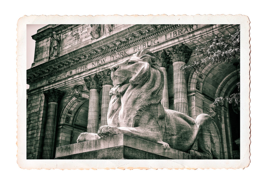 B&W postcard photo of statue of lion outside New York Public Library, New York City, USA