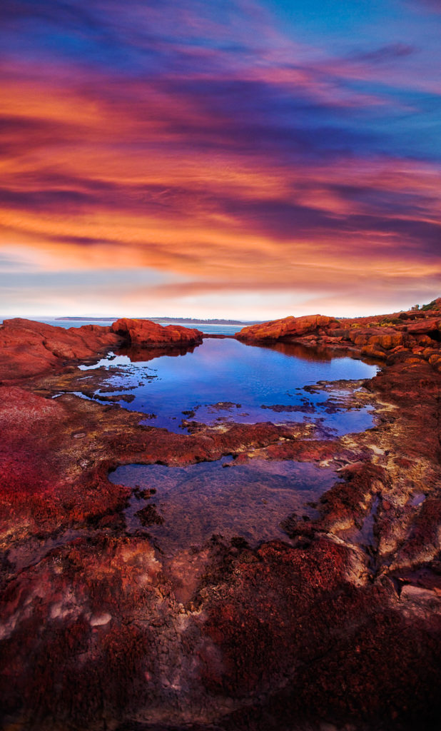 Colour photograph of a rock pool above the rocky coast of New South Wales, Australia
